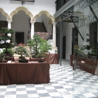 FIESTA-DE-LOS-PATIOS-001