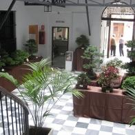 FIESTA-DE-LOS-PATIOS-008