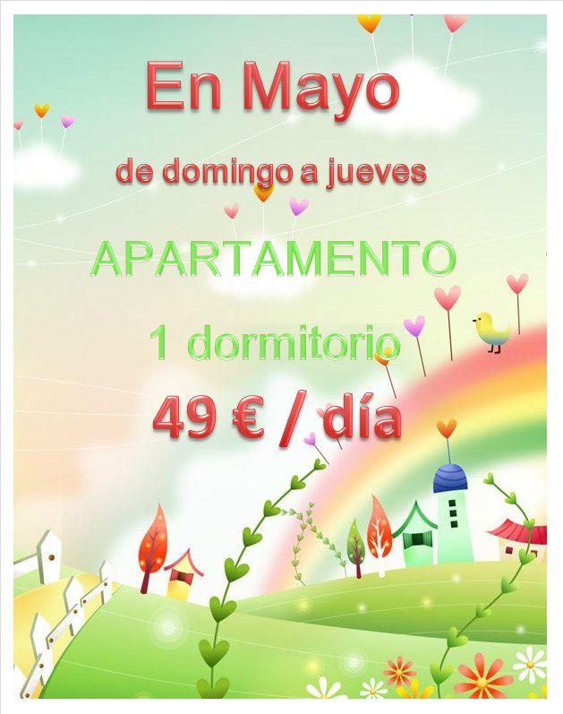 mayo web
